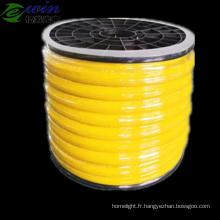 Néon LED SMD monocolore Flexible