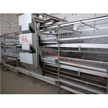 Galvanized Automatic Pullet Cage Certificate of ISO9001