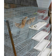 Commercial Layer Quail Cage/ Farm Equipment Quail Cage/ Battery Quail Cage