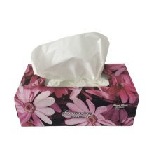 Box Facial Tissues 2 Ply 100% Wood Pulp