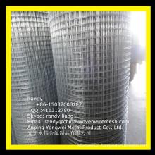 "YW-- 1/2"" galvanized wire mesh/Skype: randy.liang1"