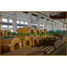 Precio 310 Hot Rolled Stainless Steel Coil