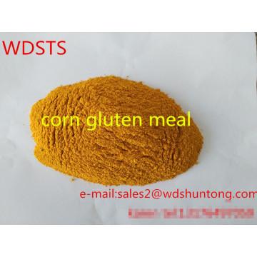 Refeição de glúten de milho para aves de capoeira com venda quente de alta qualidade