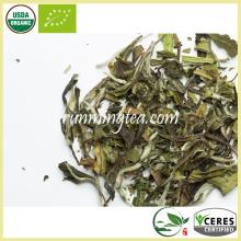 ИМО Частные этикетки Детокс чай Белый цветок чай