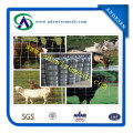 Electro Galvanized Farm Fence