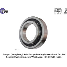 ISO Certified Cylindrical Roller Bearing