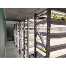 Customized Full Spectrum Hydroponic Greenhouse 8 Bars 630W LED Grow Light for Indoor Plants LED Grow Light