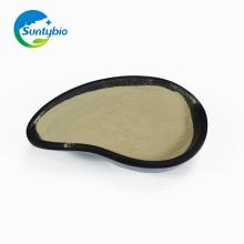 Fermentação Biológica Aditivo Bacillus Subtilis