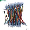A alta qualidade DMX colorido conduziu a corda leve exposta Rgb da corda da luz do Natal para letras do canal