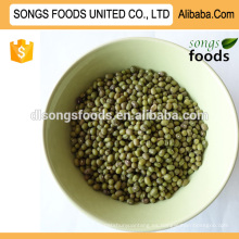 Importar frijol mungo verde de china