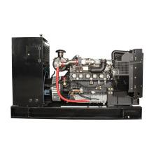 High Quality 50kw biogas power generator set