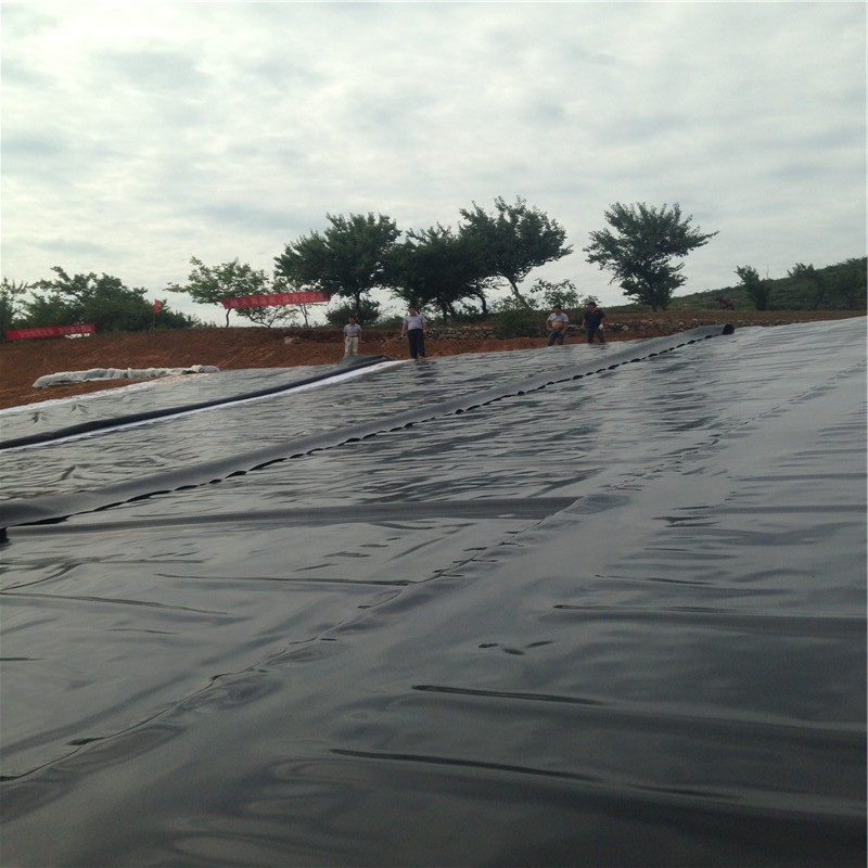 خزان الأسماك 2mm LDPE HDPE Geomembrane Price
