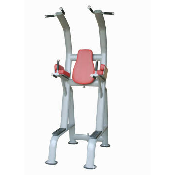 Commercial Fitness Chinning Dipping/Gym Equipment with SGS/CE (UM406)