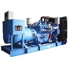 Mtu Diesel Generator Set (BMX704)