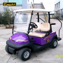 CE approuvé 2 places Trojan batterie électrique golf buggy voiture personnalisée mini golf chariot