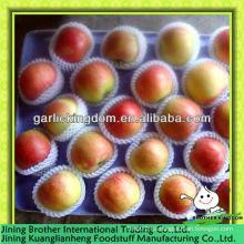 China pequeña manzana de gala roja