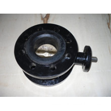 Cast Iron Body Double Flange Butterfly Valve