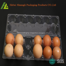 12 hokes for normal eggs