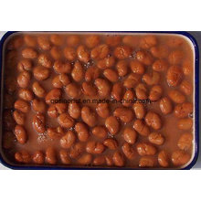 Canned Foul Medames Broad Beans