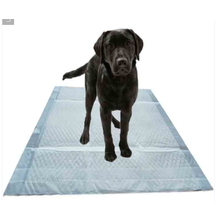 60X90cm Waterproof High Absorption pet pads
