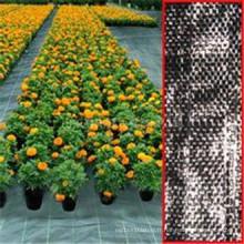 Tissu non-tissé de Spunbonded pp de lutte contre les mauvaises herbes d'agriculture / barrière de mauvaise herbe