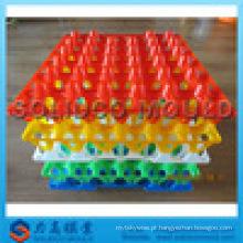 Deft design plástico ovo bandeja molde fábrica