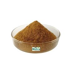 Poudre d'extrait de cassiae de sperme biologique de haute qualité