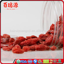 Chinese goji berries lycium barbarum goji coltivazione benefits goji berries