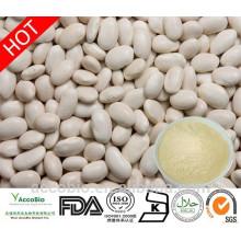Polvo blanco de alta calidad del extracto de haba de riñón de la fuente al por mayor 4: 1 Phaseolin1%
