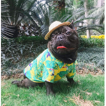 Собака Гавайская футболка одежда
