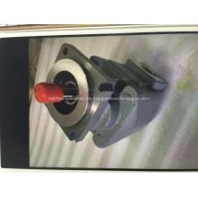 20028983 Bomba de engranajes rotativos hidráulicos Terex