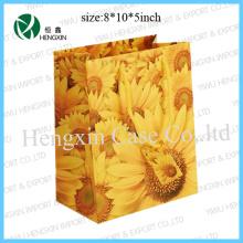 Shopping Portable Bag Handle Bag (HX-P2595)