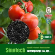 Humizone Reguladores de plantas: 90% Potato Humate Flake (H090-F)