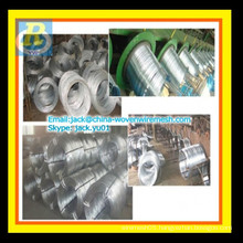 Electric Galvanized wire price/ Galvanized binding wire price