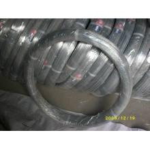 Alambre De Acero Ovalado 2.4X3.0mm für Farm Fechten --- Oval Wire