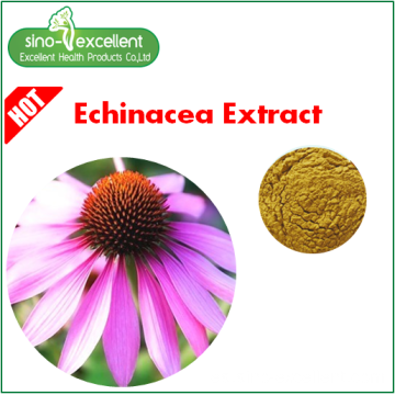 Extracto de Echinacea 100% natural