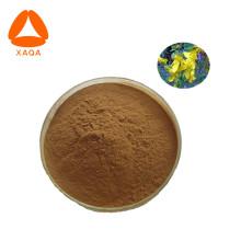 Johanniskraut-Extrakt-Pulver Hypericin