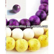 Yiwu Factory wholesale shamballa beads 2013 hot HB-1027