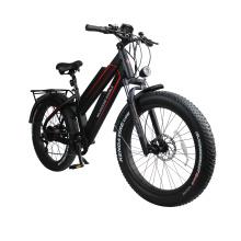 11.6Ah dual lithium battery fat tire electric bike 48V 750W ebike 26inch e-bike