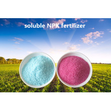 19-19-19 NPK Polvo Soluble Fertilizante