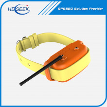 Animal Dog GPS Training Collar Tracking Devices