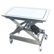 New style surgical veterinary examination electric treatment table for dogs