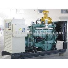 Generador de biogás de 25KW