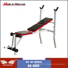 Exercice de banc de musculation d'intérieur à vendre (ES-520)
