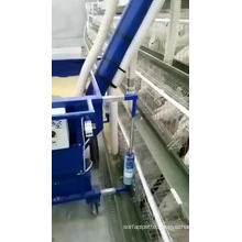 Poultry Farm Equipment Electric Animal Farm Feeding Car Layer Cage automatic Chicken broiler feed feeding car for egg layers