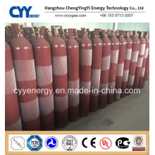 Hochwertiger Hochdruck-nahtloser Stahl-Feuer-kämpfender Kohlendioxid-Gas-Zylinder
