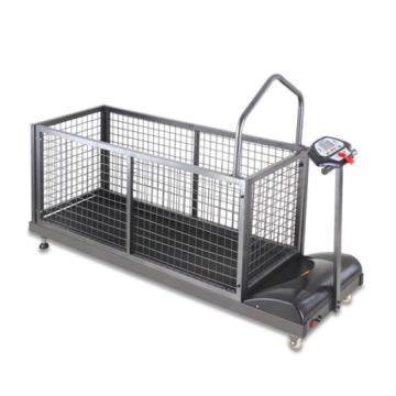 2016 New Style Pet Treadmill Dp-9637