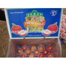 Nuevo cultivo fresco fuji manzana