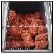 Kaufen Sie China Zwiebel