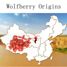 New Arrival Goji Berries Natural Wolfberry ervas